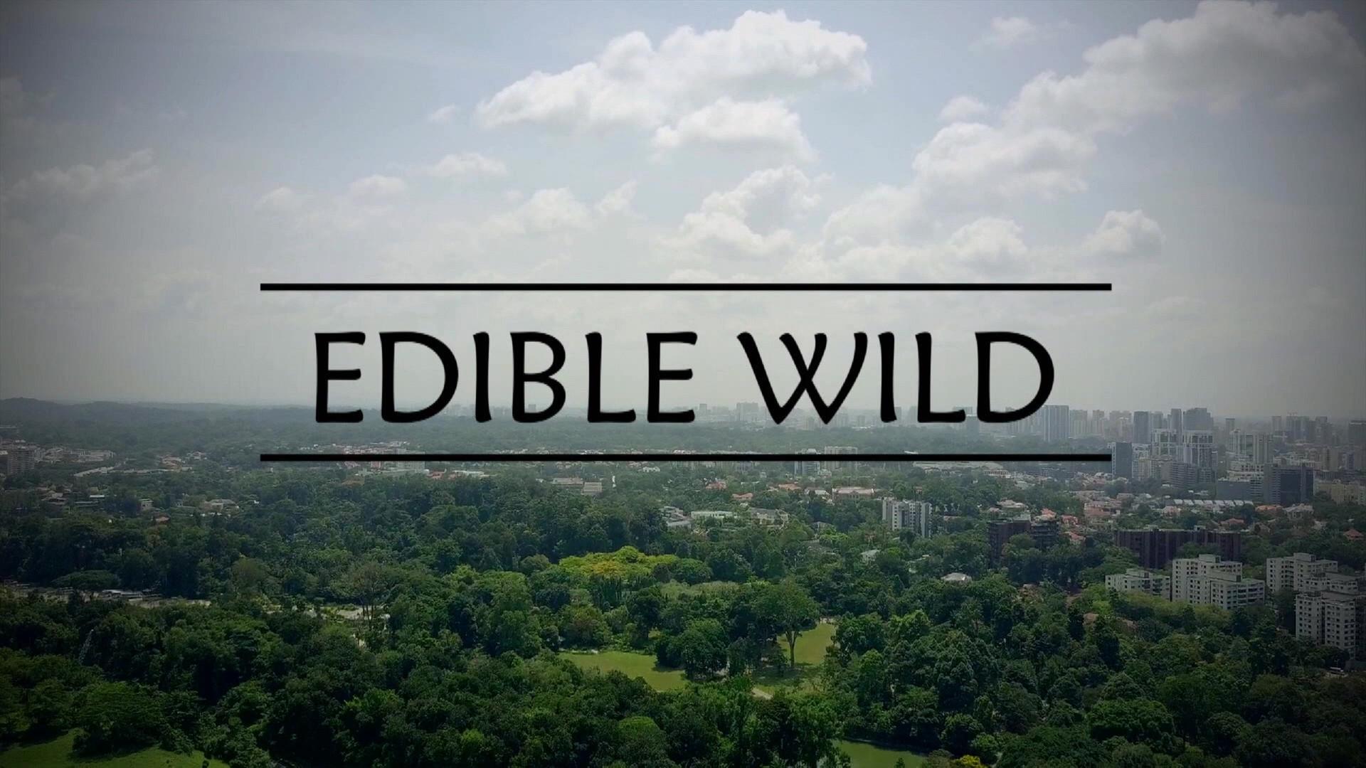 Edible Wild Season 2