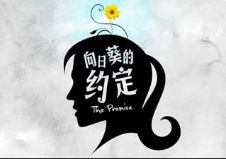 The Promise 向日葵的约定