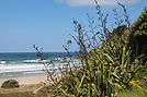 Kaitoke Beach, Great Barrier Island, Auckland, New Zealand