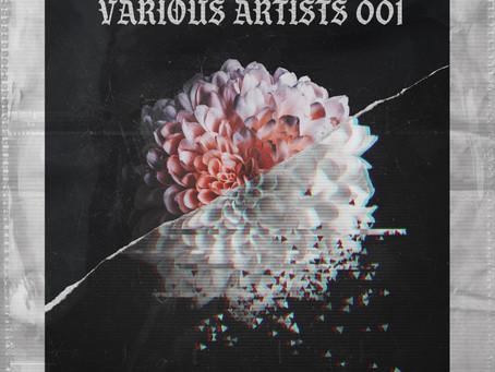 Various Artist 001