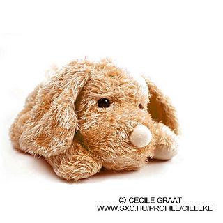 Brown Plush Toy Dog