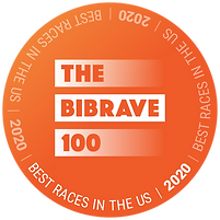 TheBibRave100-winner_2020.png