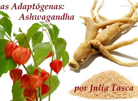 PLANTAS ADAPTÓGENAS (segunda parte): ASHWAGANDHA