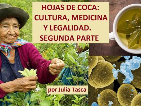 HOJAS DE COCA: CULTURA, MEDICINA Y LEGALIDAD. SEGUNDA PARTE.