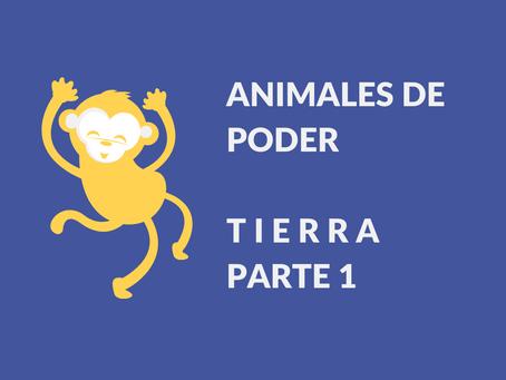 Animales de poder | Tierra