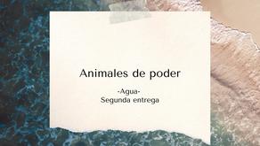 Animales de poder   Elemento Agua   2° parte