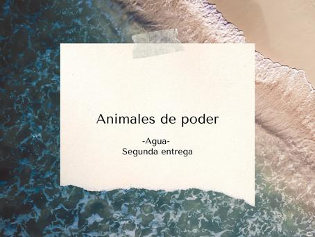 Animales de poder | Elemento Agua | 2° parte