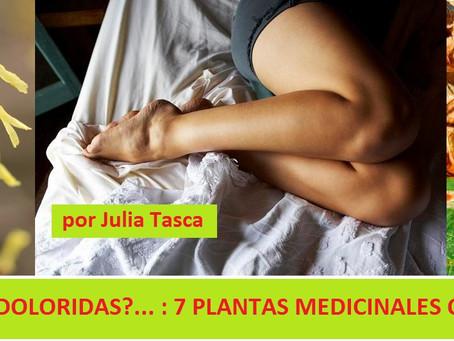 PIERNAS HINCHADAS Y DOLORIDAS?... : 7 PLANTAS MEDICINALES QUE PUEDEN AYUDAR!
