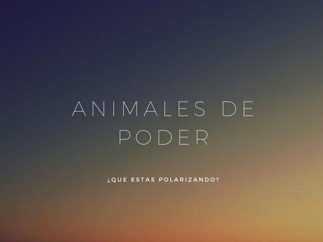 Animales de poder | ¿Qué polarizas?