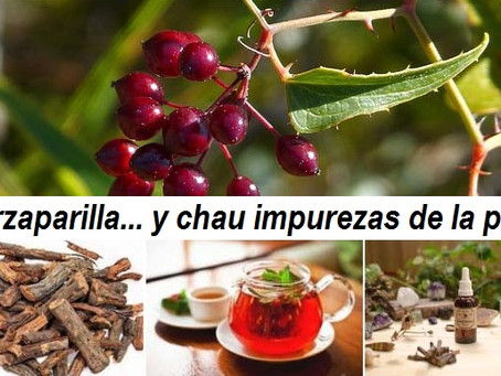 ZARZAPARRILLA… Y CHAU IMPUREZAS DE LA PIEL!
