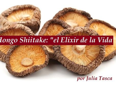"""HONGO SHIITAKE, """"EL ELIXIR DE LA VIDA"""""""