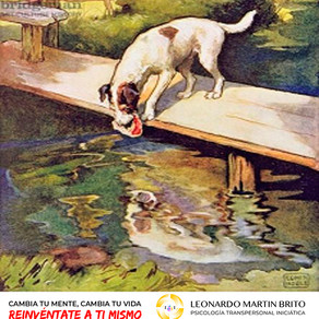 La Fábula del Perro Y Su Reflejo En El Río
