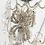Thumbnail: Arachnid - Rhinestone Spider Necklace