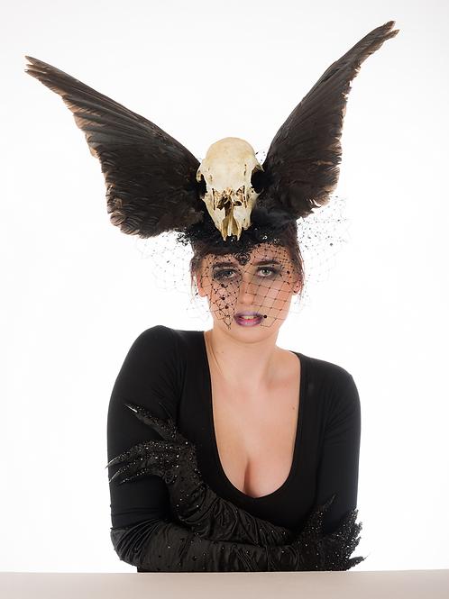 Fallen Dreams - Deer Skull and Crow Wing Headpiece