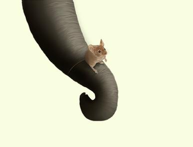 fondo_ratón_curso_ilustración_para_carte