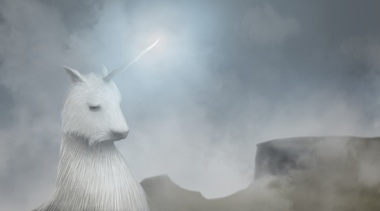 unicornio process video.jpg