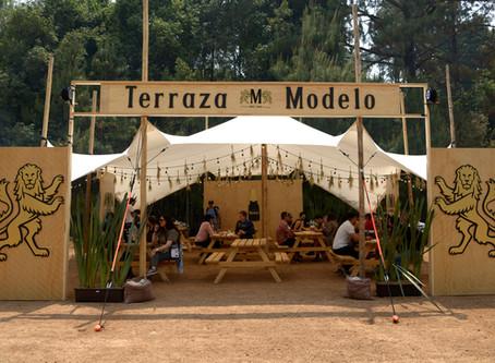 Conoce las Opciones Gastronómicas de la Terraza Modelo en Festival Bravo