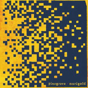'Marigold' de Pinegrove