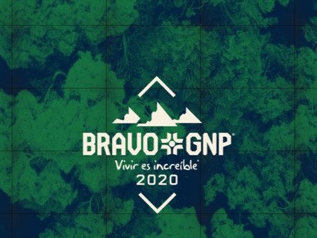 Conoce los detalles de Bravo GNP 2020