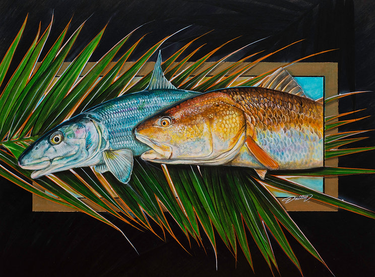 """Redfish Bonefish"""