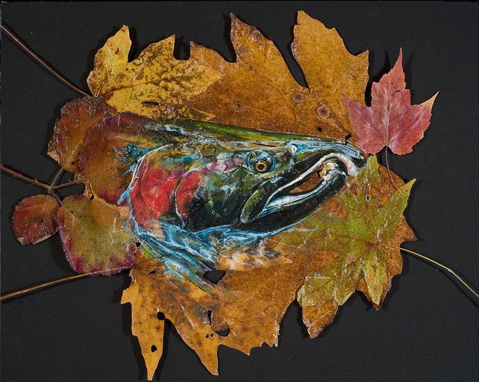 """Coho On Leaves"""
