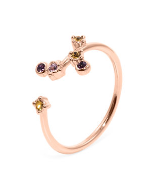 Rose_Points-of-Light-Ring_01.png