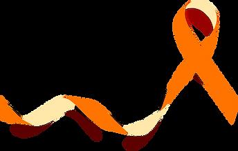 laço laranja.png