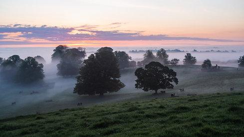 Sunrise, Brittas Estate, Nobber, Meath