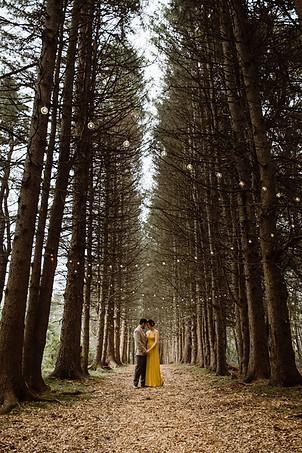 Catskills Mountain NY Wedding at Hemlock Falls Camping: Hallway of Trees