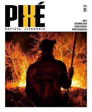 PIXE#18-especial.jpg