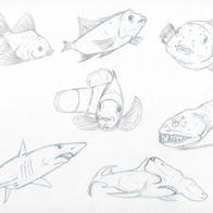 Reptile/Fish Study 3