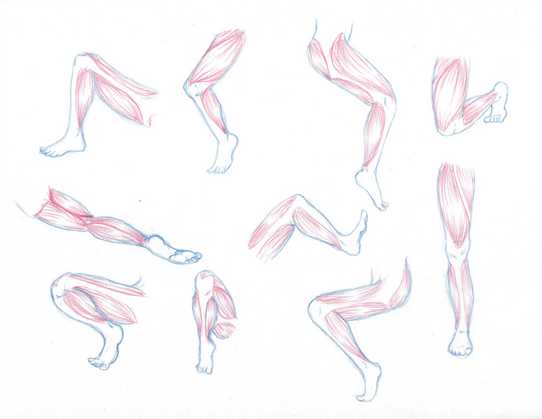 irving_w_legsketches.jpg
