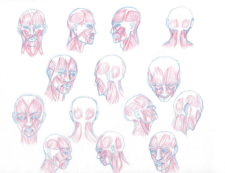 irving_w_headsketches1.jpg