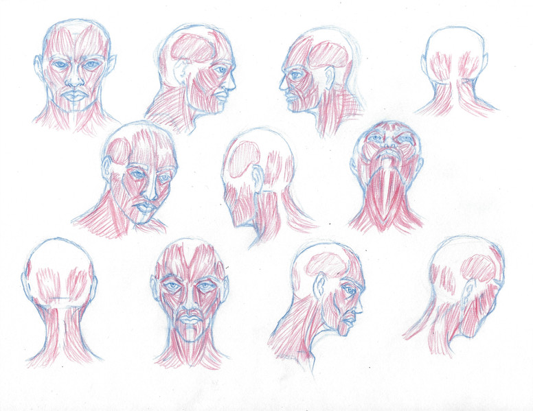 irving_w_headsketches2.jpg