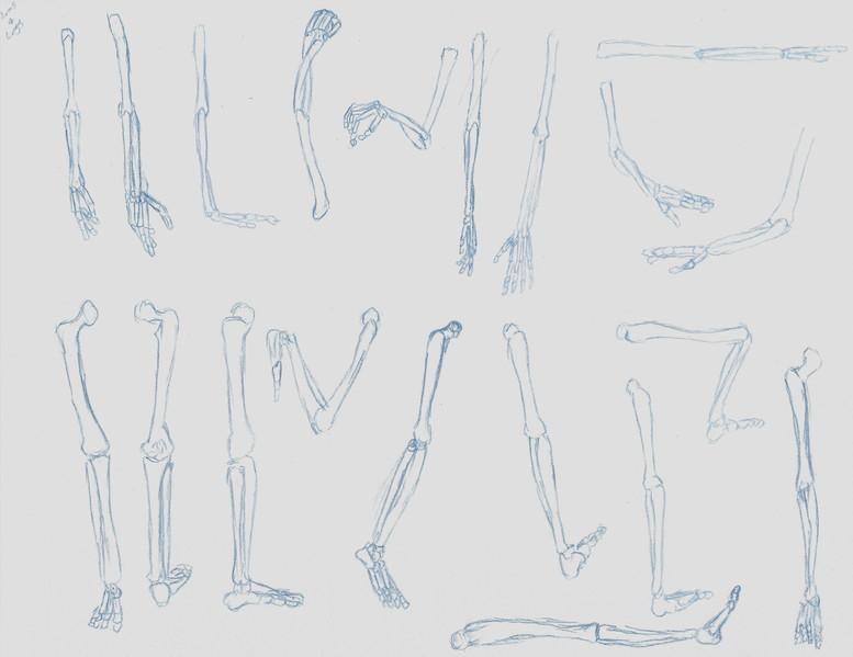 IrvingW_Arm&Legs.jpg