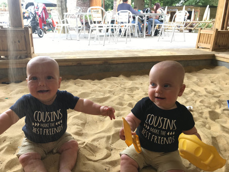 Looking for a mother's helper for sweet 9 months old twins in Cremorne from September