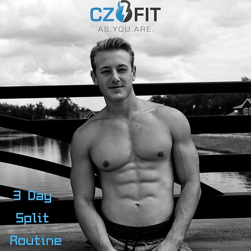 3 day workout program men  zanderfit