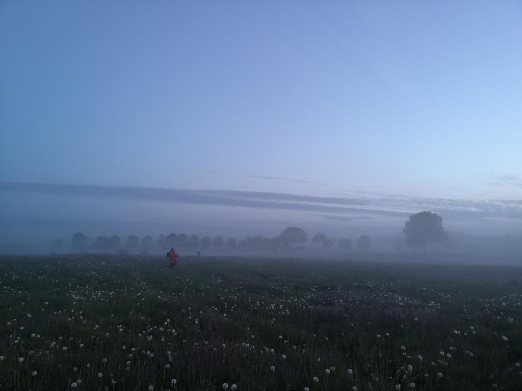 Läufer im Morgengrauen