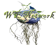 we_network_logo_1x_edited_edited.png