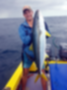 yellow fin 2.png