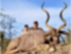 Wild Horizon video Kudu.png
