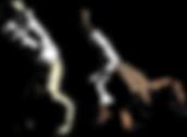 capoeira 1.png
