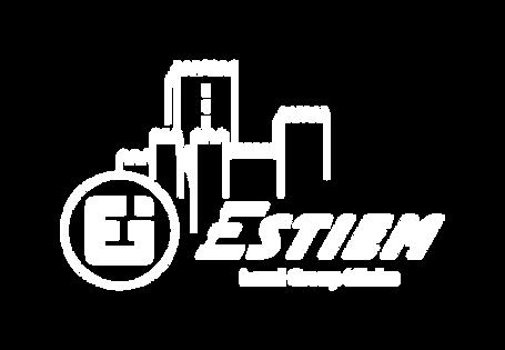 NEEGIUM ESTIEM LG - logo 03 (1).png
