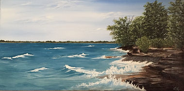 5 shoreline across from sandbanks.JPG