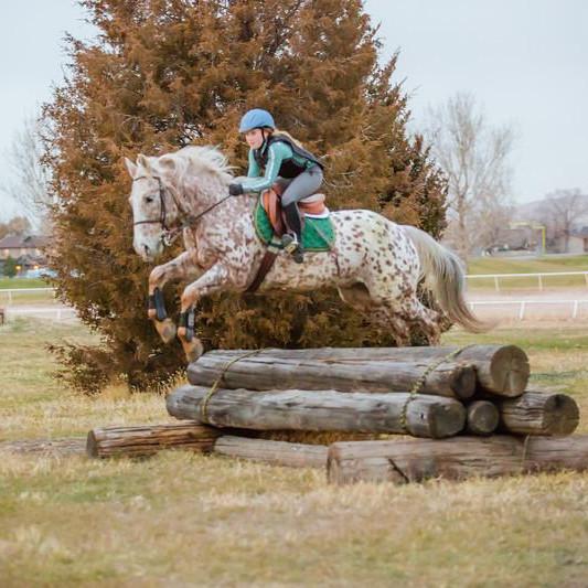 Wasatch Pony Club Membership 2021