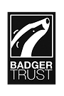 THE BADGER TRUST.png