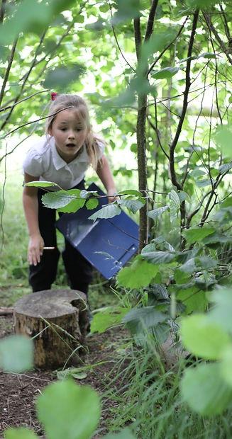 Moathouse garden optimised 2