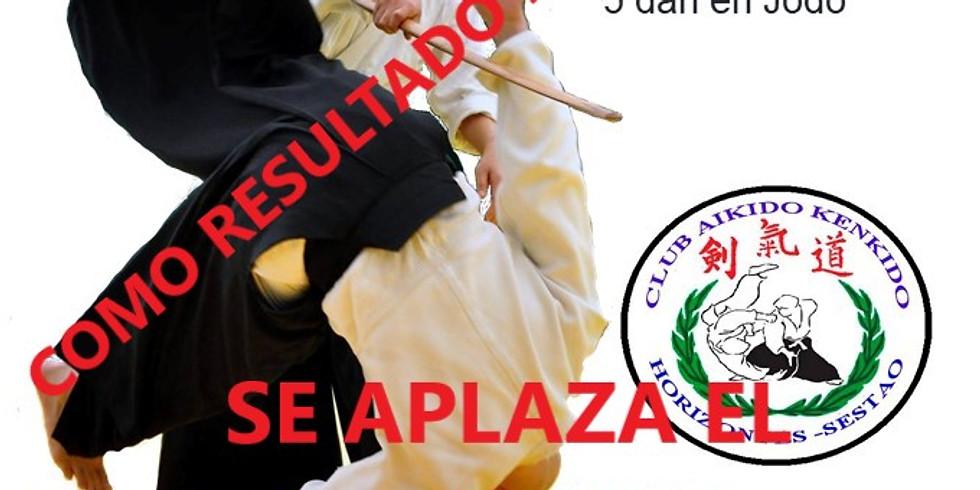 APLAZADO V SEMIRARIO INTERNACIONAL AIKIDO SESTAOJUNIO - 2022