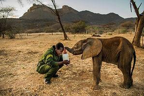 Reteti_Elephant_Preserve.jpg