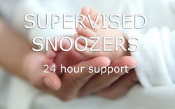 Supervised-Snoozer-Text